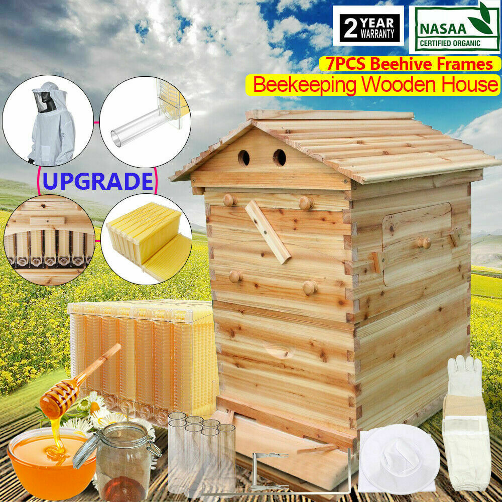 7PCS Upgraded Automatic Bee Frames Beehive Beekeeping Wooden House US STOCK