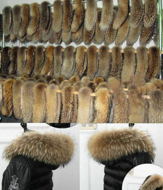 Top Natur Waschbär Kragen Pelzkragen Pelz Fell Echtpelz Raccoon f Jacke Mantel