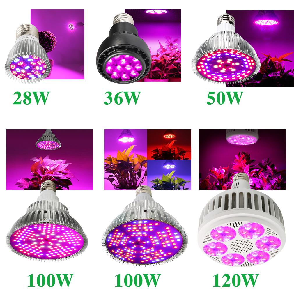 E27 28W-100W LED Grow Light Lampe Wachstumslampe Voll Spektrum Hydrokultur Birne