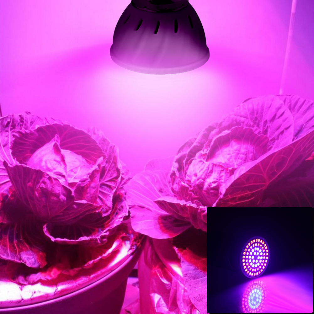 Wide Spectrum E26 LED Grow Light 110V 8W Lamp For Indoor Hydroponic Flowers