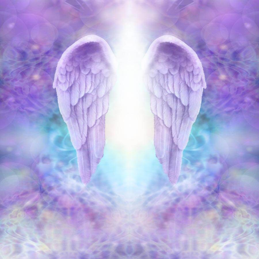 Angel Wings Purple Background Dreamy Heaven Kid Photo ...