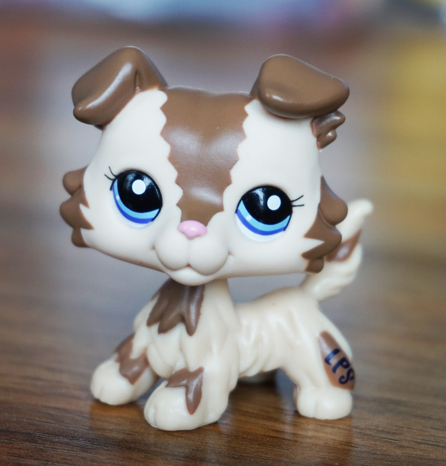 Uncategorized Little Pet Shop cream tan brown collie dog blue eyes girl toys littlest pet shop does not apply